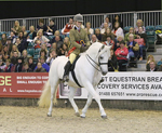 JAN13 News NF at HOYS