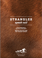 FEB13 News Strangles cover
