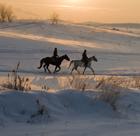 DEC13 Insurance winter riding