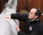 FEB14 Careers saddlefitter