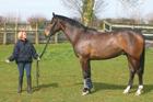 APR14 RL LH Teaching a young horse